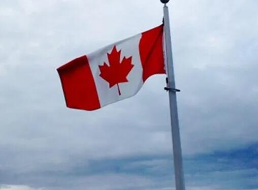 我们如何获得和使用加拿大Cida赠款基金
